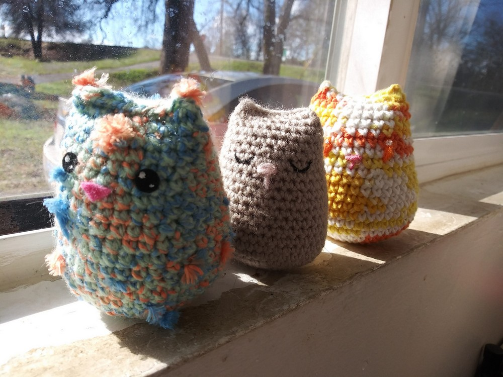 Free Crochet Beginner Ami Cat