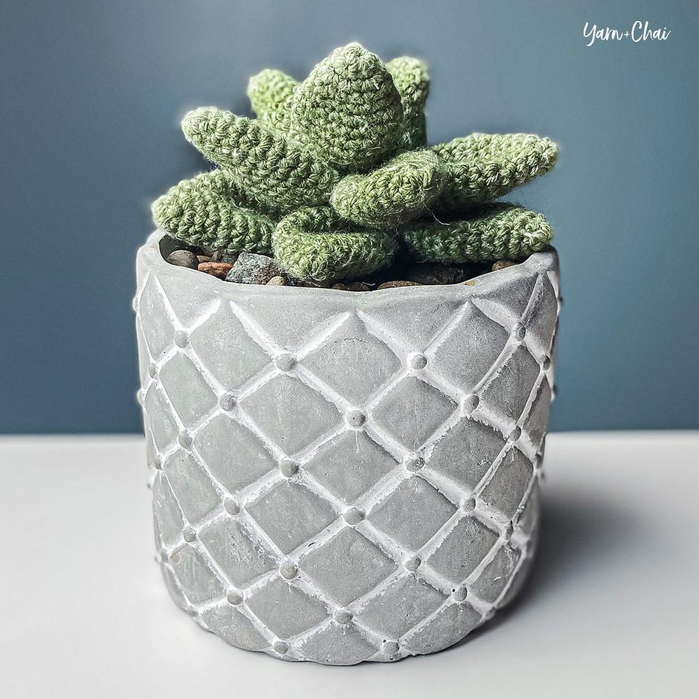 Free Crochet Desktop Succulent Pattern