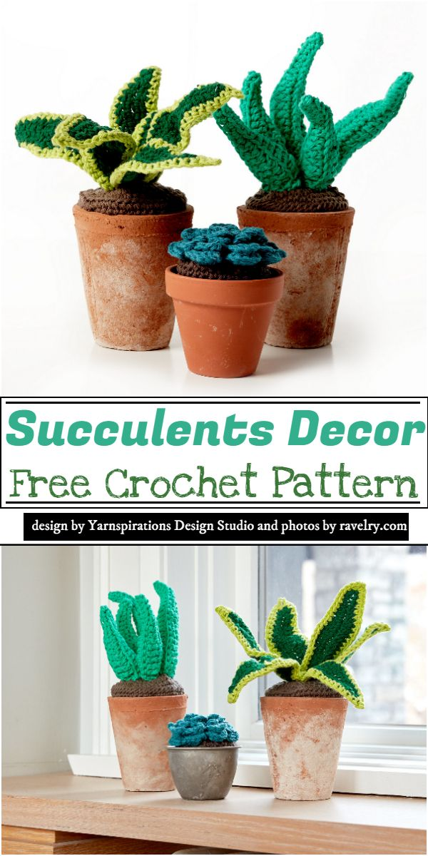Succulents Decor Crochet Pattern
