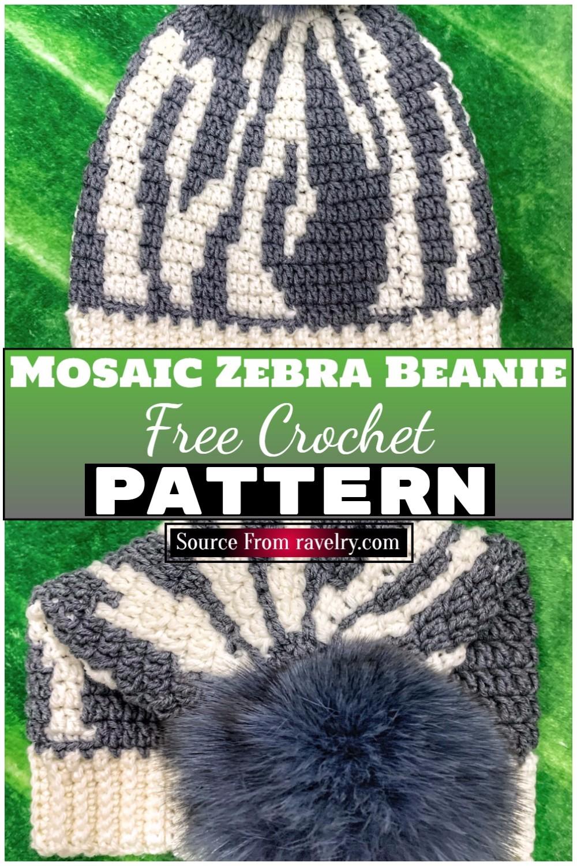Free Crochet Mosaic Zebra Beanie 1