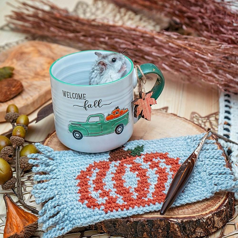 Pumpkin Mug Rug Crochet Coaster
