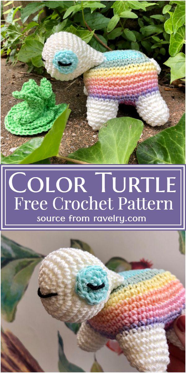 Free Crochet Color Turtle Pattern