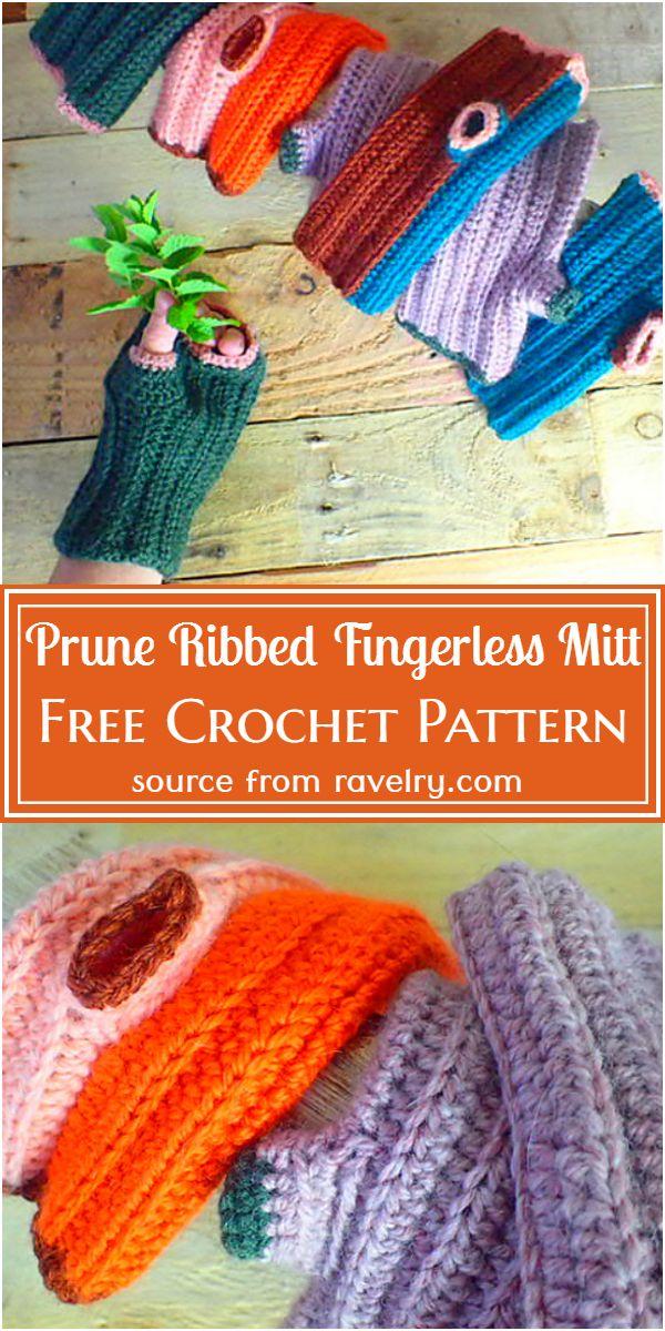 Free Crochet Prune Ribbed Pattern