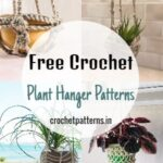 Free Crochet Plant Hanger Patterns To Beautify Your Home