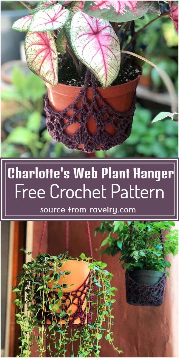Free Crochet Charlotte's Web Plant Hanger Pattern