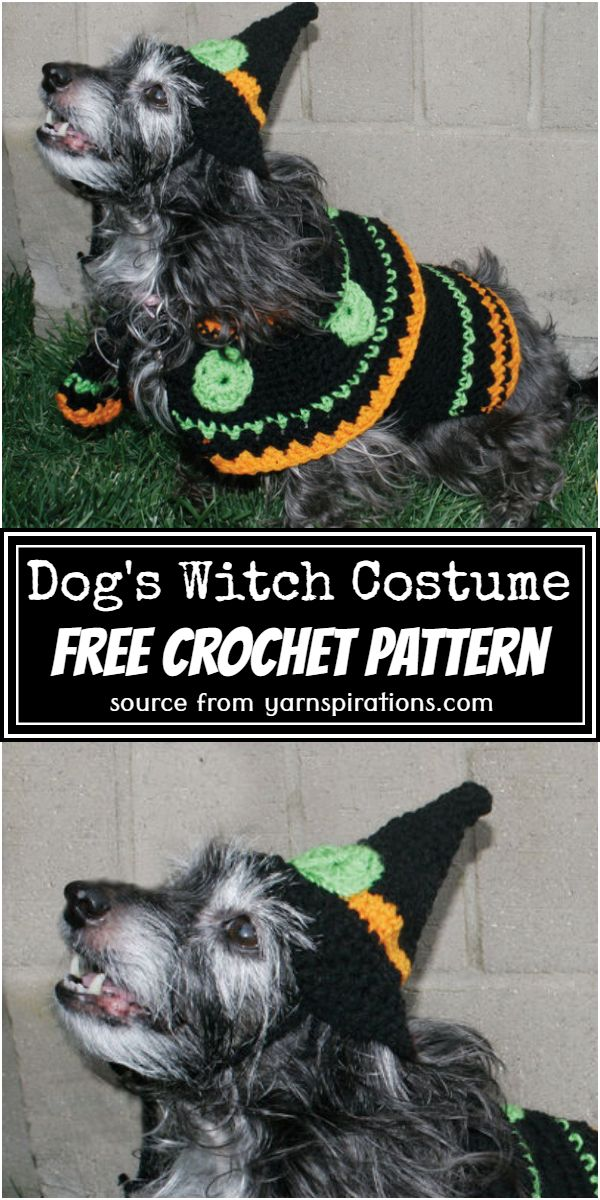 Free Dog's Costume Pattern