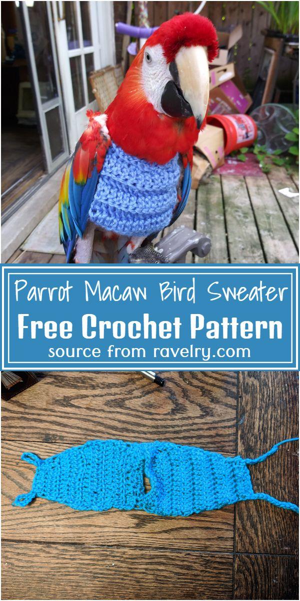 Free Crochet Parrot Macaw Bird Sweater Pattern