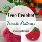 Superb Collection Of Free Crochet Tomato Patterns