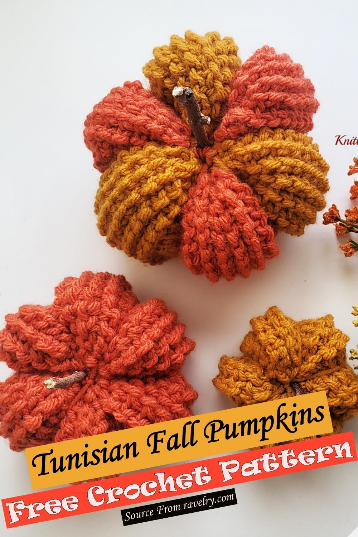 Free Crochet Tunisian Fall Pumpkins Pattern