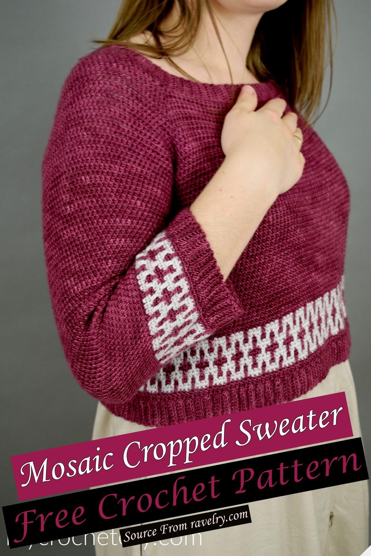 Free Crochet Mosaic Cropped Sweater Pattern