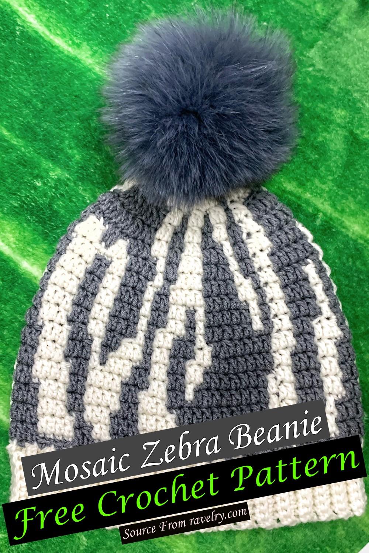 Free Crochet Mosaic Zebra Beanie Pattern