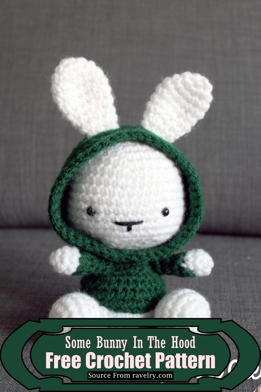 Crochet Some Bunny In The Hood Pattern
